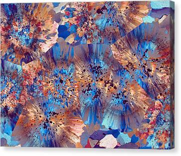 Ocean Jasper Canvas Print by Bernardo Cesare