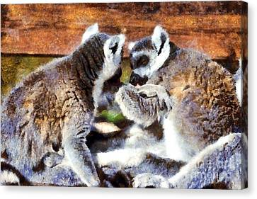 Benches Canvas Print - Ring Tailed Lemurs by George Atsametakis