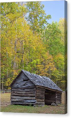 Tennessee, Great Smoky Mountains Canvas Print by Jamie and Judy Wild
