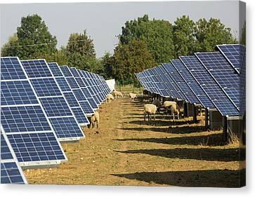 Wymeswold Solar Farm Canvas Print by Ashley Cooper