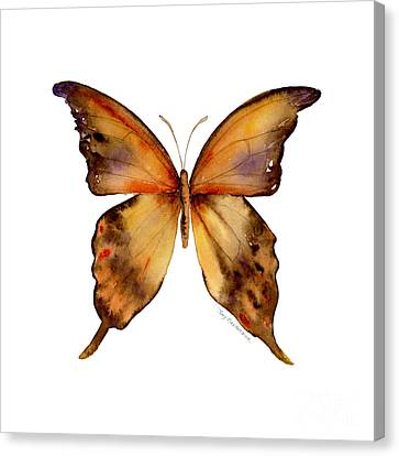 7 Yellow Gorgon Butterfly Canvas Print by Amy Kirkpatrick