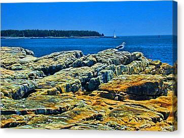 7310 - Bar Harbor Canvas Print