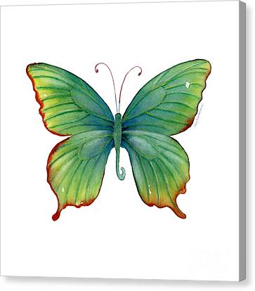 74 Green Flame Tip Butterfly Canvas Print by Amy Kirkpatrick