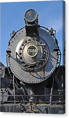 7688 Canvas Print by Skip Willits