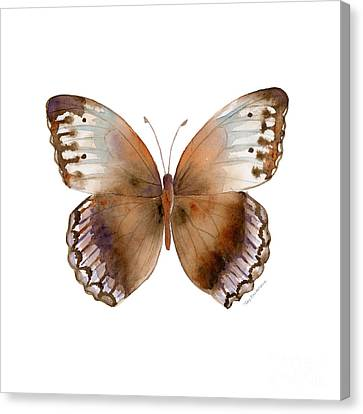 79 Jungle Queen Butterfly Canvas Print by Amy Kirkpatrick