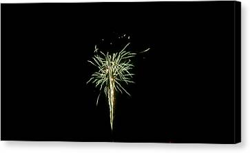 Australia - Green White Burst Of Fireworks Canvas Print by Jeffrey Shaw