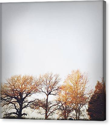 Autumn Canvas Print by Les Cunliffe