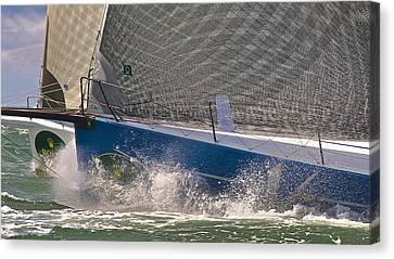 Bay Regatta Canvas Print by Steven Lapkin