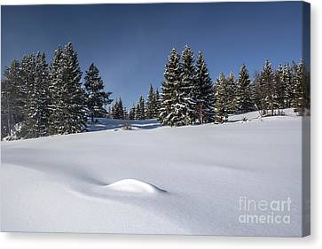 Beautiful Winter Landscape Canvas Print by IB Photo