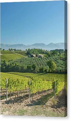 Europe, Italy, Umbria, Near Montefalco Canvas Print