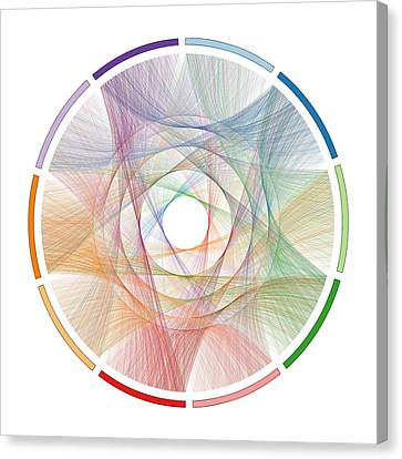 Flow Of Life Flow Of Pi Canvas Print by Cristian Ilies Vasile