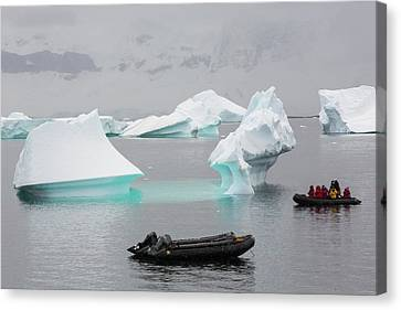 Icebergs Off Curverville Island Canvas Print