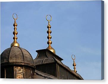 Istanbul, Turkey Canvas Print by Julien Mcroberts