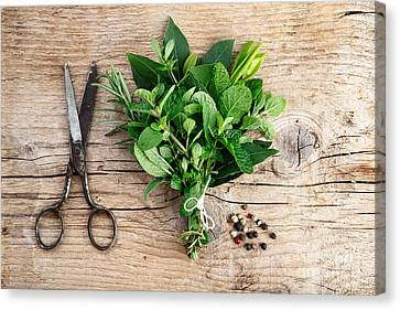 Kitchen Herbs Canvas Print