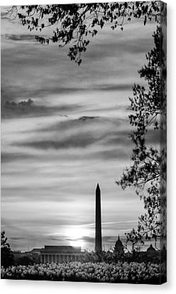 Lincoln Memorial Canvas Print by Celso Diniz