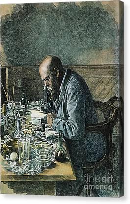 Robert Koch (1843-1910) Canvas Print by Granger