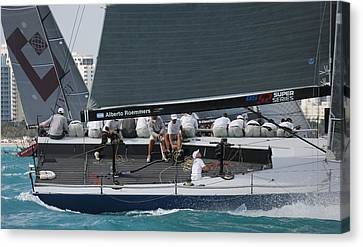 Tp52 Regatta Canvas Print by Steven Lapkin