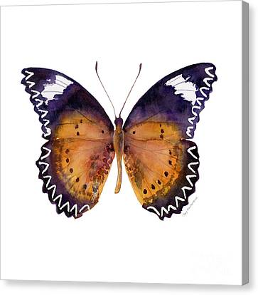 87 Cethosia Cyane Butterfly Canvas Print by Amy Kirkpatrick