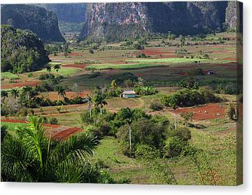 Cuba, Pinar Del Rio Province, Vinales Canvas Print