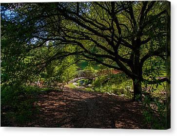 Duke Gardens Canvas Print by Gene Hilton
