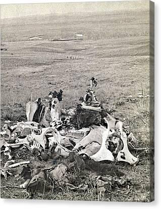 Little Bighorn, 1876 Canvas Print