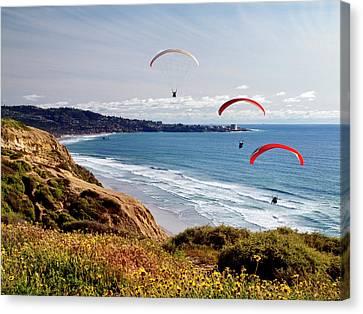 Usa, California, La Jolla Canvas Print by Ann Collins
