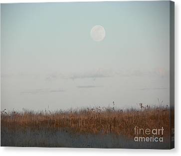 Beach Canvas Print - 932 D953 Salisbury Beach State Reservation by Robin Lee Mccarthy Photography