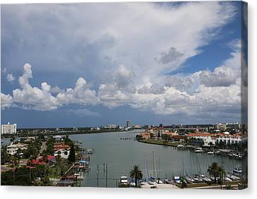 Canvas Print - Clearwater Florida by Paul SEQUENCE Ferguson             sequence dot net