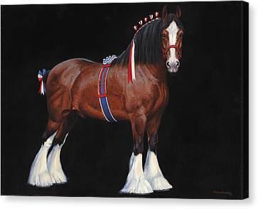 Clydesdale Champion Stallion Canvas Print by Don  Langeneckert