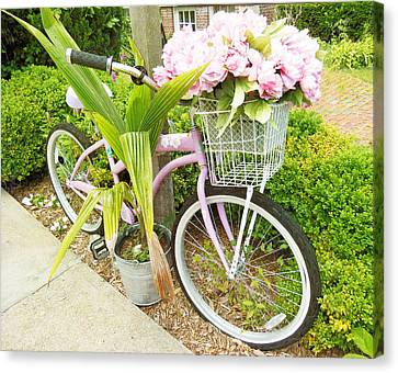 Canvas Print featuring the photograph A Basket Of Peonies by Rosemary Aubut