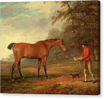 A Bay Horse Approached By A Stable-lad With Food Canvas Print
