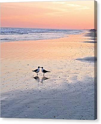 A Beach Romance Canvas Print