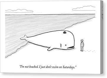 A Beached Whale Wears A Hasidic Rabbi Hat Canvas Print by Paul Noth