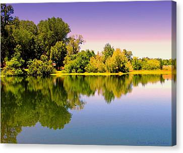 A Beautiful Day Reflected Canvas Print by Joyce Dickens