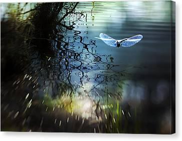 A Beautiful Dream Canvas Print