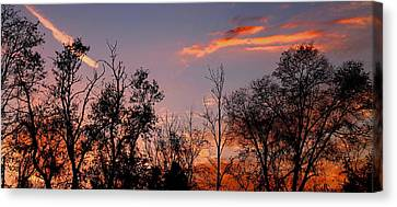 Canvas Print featuring the photograph A Beautiful Ending by Candice Trimble