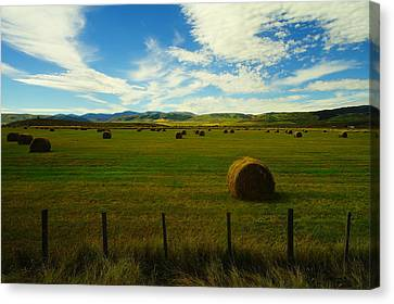 Counry Canvas Print - A Beautiful Harvest. by Jeff Swan