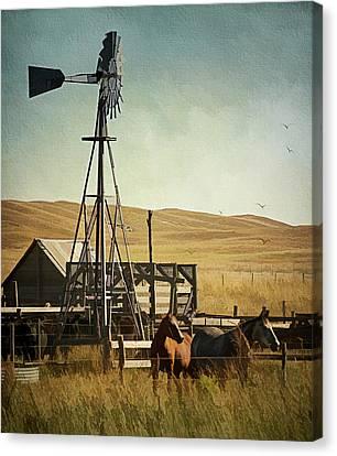 A Beautiful Nebraska Sandhills Farm Canvas Print by Priscilla Burgers