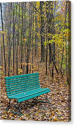 A Bench Nowhere... Canvas Print