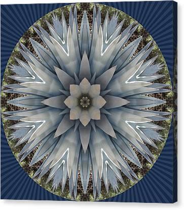 A Blue Agave Canvas Print by Trina Stephenson