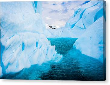 A Blue Lagoon - Antarctica Iceberg Photograph Canvas Print by Duane Miller