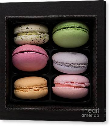 A Box Of French Macaron Cookies Canvas Print by Edward Fielding