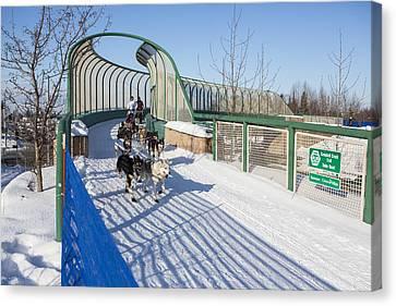 A Bridge In The Iditarod  Canvas Print by Tim Grams