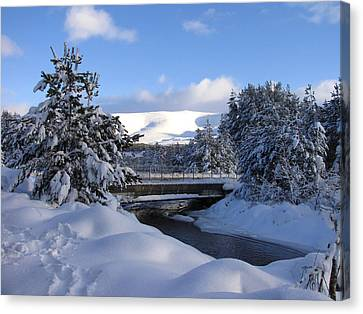 A Bridge In The Snow Canvas Print by Jacqi Elmslie