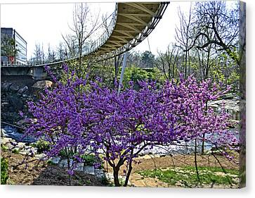 A Bridge To Spring Canvas Print by Larry Bishop