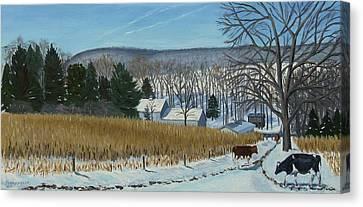 A Bright Blue Winter Day At Bear Meadows Farm Canvas Print