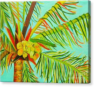 A Bunch Of Coconuts Canvas Print