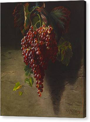A Bunch Of Grapes Canvas Print by Andrew John Henry Way