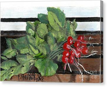 A Bunch Of Radishes  Canvas Print