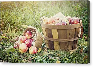 A Bushel And A Peck Canvas Print by Heather Applegate